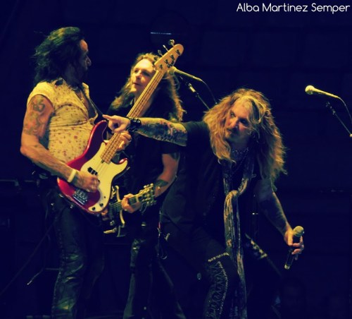 DeadDaisies02