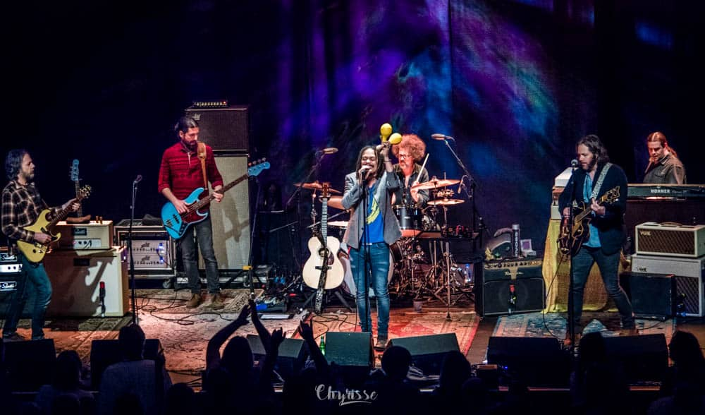 The Magpie Salute-Feb 2019_84