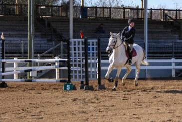 Virginia Horse Center hosts regional championship