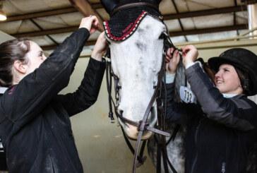 Virginia Horse Center preparing for new event this June