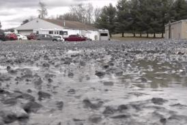 Persistent precipitation mucks up work for farmers