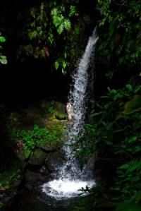 Recommendations: Best Things To Do in Roseau, Dominica?