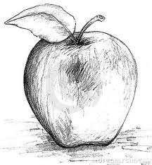 How to draw an apple for beginners and kids step by step | Easy way fruit drawing
