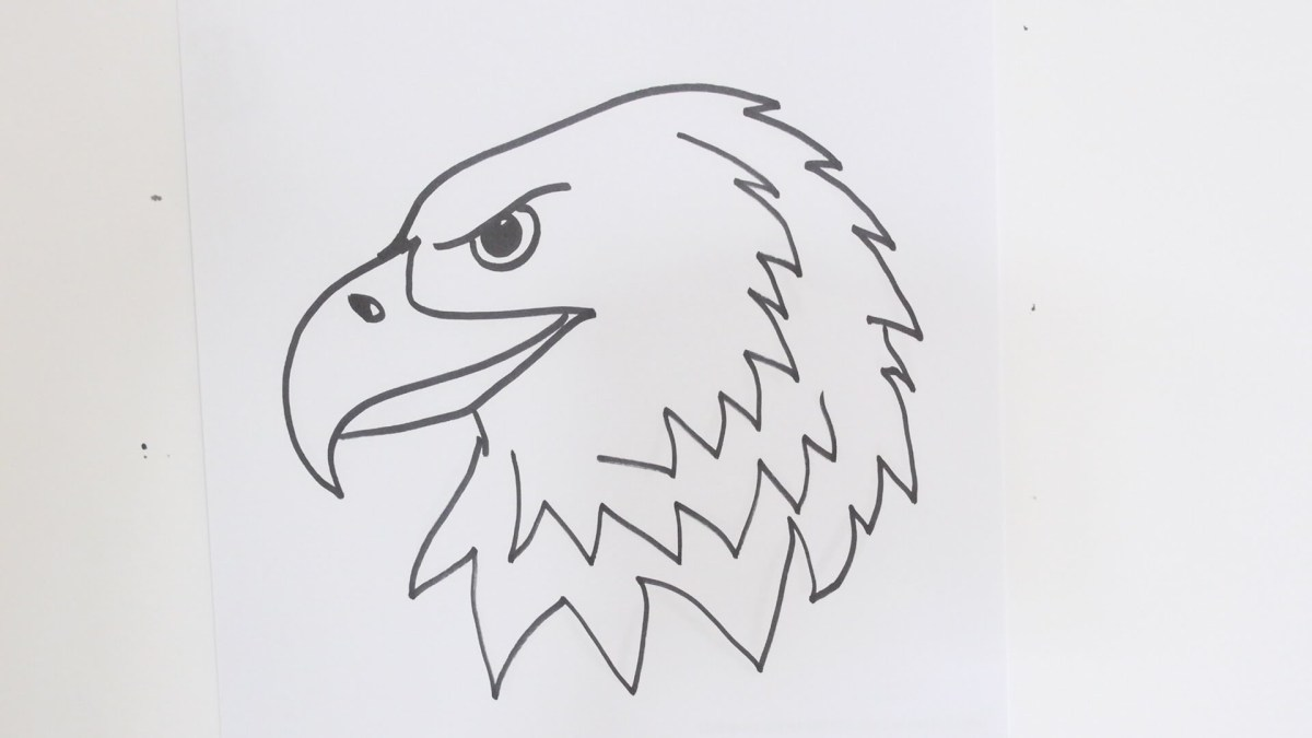 How to draw an eagle head step by step easy video tutorial for beginners