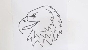 How to Draw Eagle claws step by step easy video | Beginner