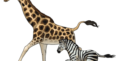 learn how to draw easy giraffe step wise for beginners