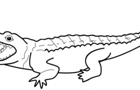 how to draw easy alligator step wise