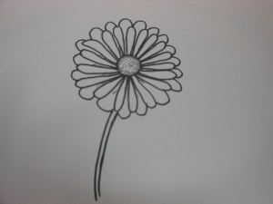 how to draw a  daisy flower easy
