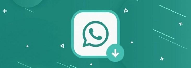 cual whatsapp plus