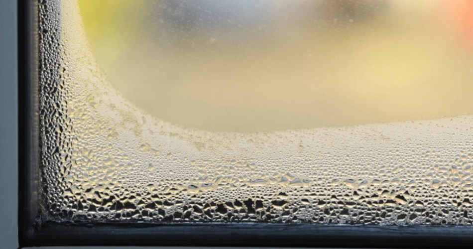 Condensation on inside of Windows