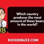 Which country produces the most amount of these beans in the world?