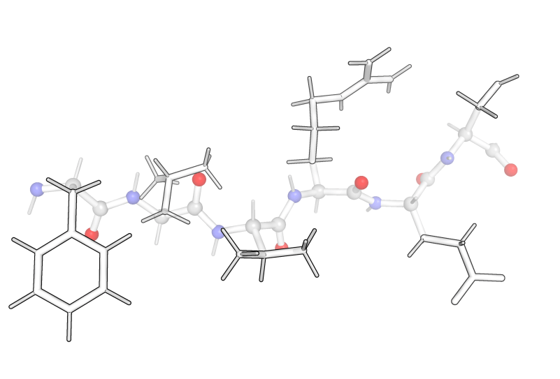 Protein Background