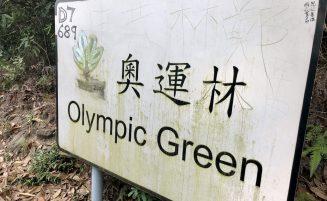 Hike: Olympic Trail / Green
