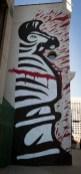 sike-angry-zebra