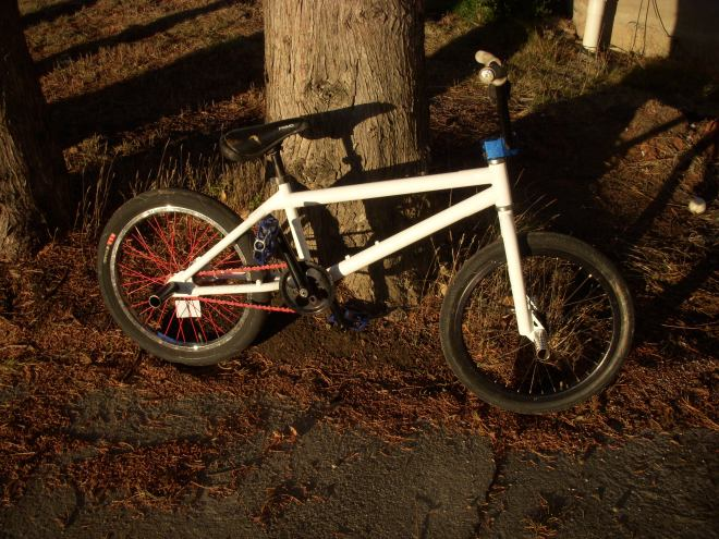 A white street style BMX with red and blue accents leaning against a tree