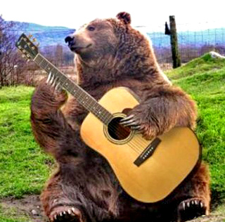bear guitar
