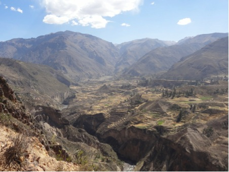 Terraces above the river and the entrance to Colca Canyon at the top of the valley. Copyright: Anna Bidgood 2014.