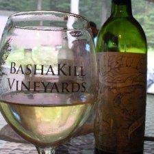 Bashakill