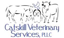 Catskill Veterinary Services