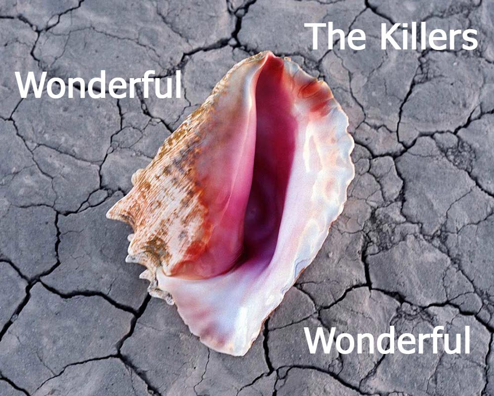 The Killers «Wonderful Wonderful» обложка (фото)