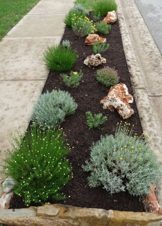 Texas Style Front Yard Landscaping Ideas 39