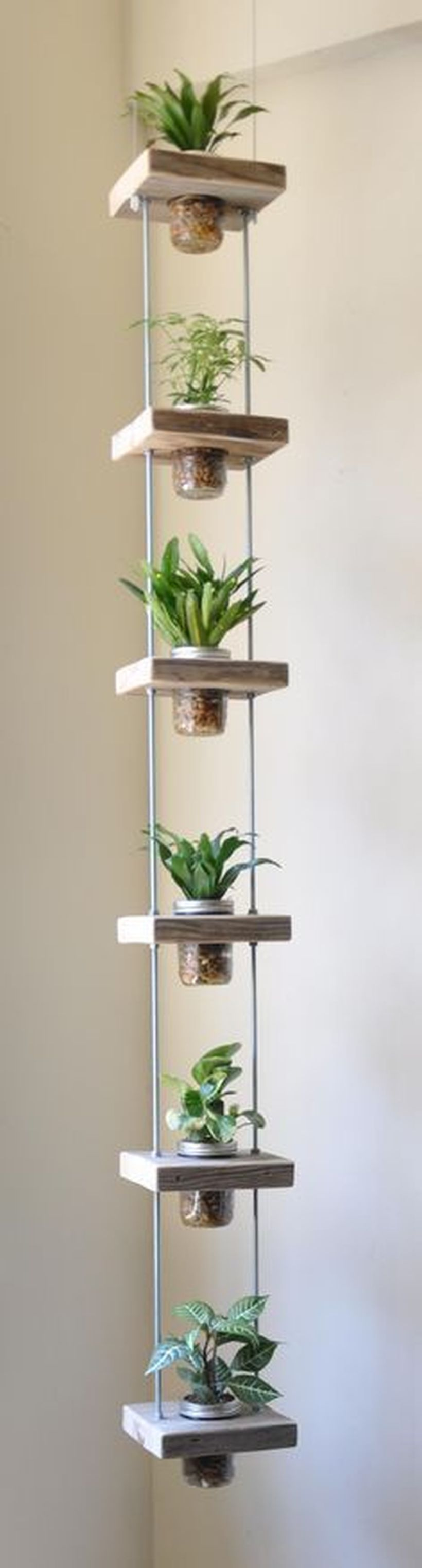 Simple Vertical Garden1