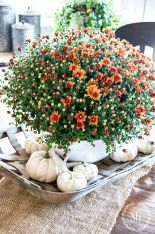 Best Trending Fall Home Decorating Ideas 94