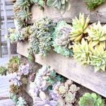 Amazing Creative Wood Pallet Garden Project 51