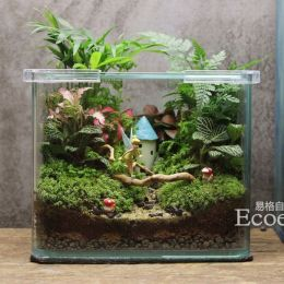 Amazing DIY Mini Fairy Garden for Miniature Landscaping 83