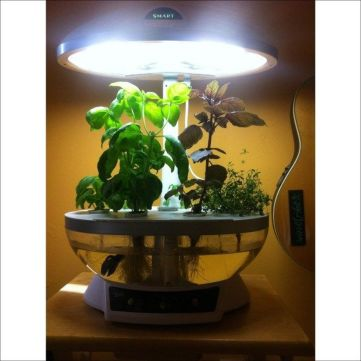DIY Indoor Aquaponics Fish Tank Ideas 26