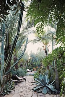 Stunning desert garden ideas for home yard 14