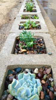 Stunning desert garden ideas for home yard 16