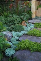Stunning desert garden ideas for home yard 24
