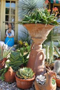 Stunning desert garden ideas for home yard 30