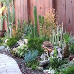 Stunning desert garden ideas for home yard 35