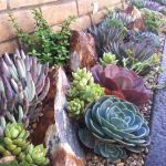 Stunning desert garden ideas for home yard 41