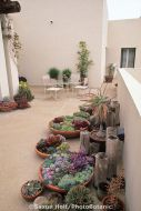 Stunning desert garden ideas for home yard 49