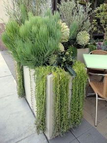 Stunning desert garden ideas for home yard 68