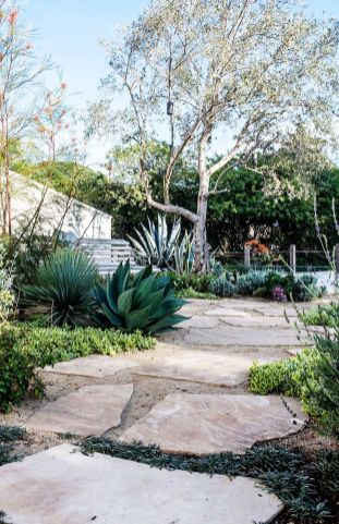 Stunning desert garden ideas for home yard 7
