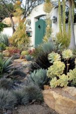 Stunning desert garden ideas for home yard 9
