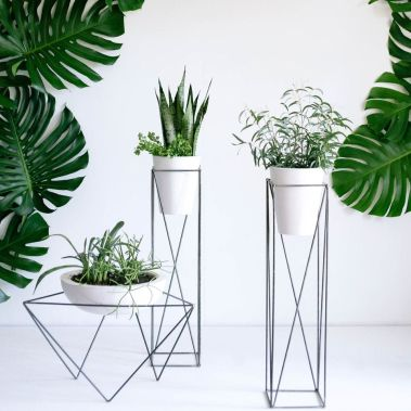 Cool Plant Stand Design Ideas for Indoor Houseplant 17