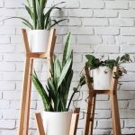 Cool Plant Stand Design Ideas for Indoor Houseplant 49