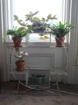 Cool Plant Stand Design Ideas for Indoor Houseplant 54