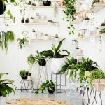 Cool Plant Stand Design Ideas for Indoor Houseplant 6