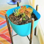 Cool Plant Stand Design Ideas for Indoor Houseplant 61
