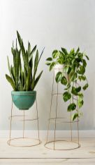 Cool Plant Stand Design Ideas for Indoor Houseplant 62
