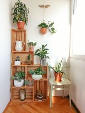 Cool Plant Stand Design Ideas for Indoor Houseplant 63