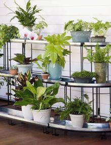 Cool Plant Stand Design Ideas for Indoor Houseplant 86