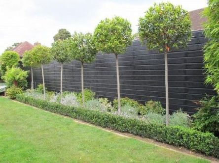 Stunning Privacy Fence Line Landscaping Ideas 17