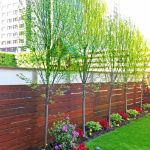 Stunning Privacy Fence Line Landscaping Ideas 81